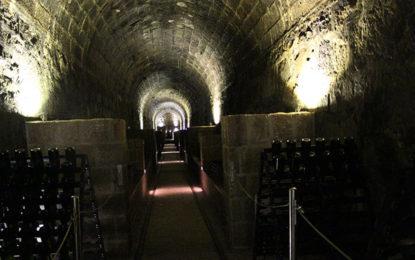 Ao redor de Curitiba, passeio pelas vinícolas