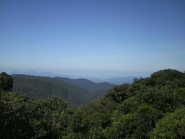 Serra do Mar, cortada pelo Caminho do Itupava (Foto Panorama do Turismo)
