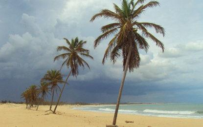 Turista busca seguro viagem para destino doméstico