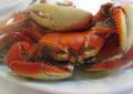 Terça-feira do caranguejo no Bimy's Restaurante