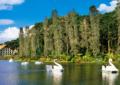 Vem aí o fórum de estudos turísticos de Gramado