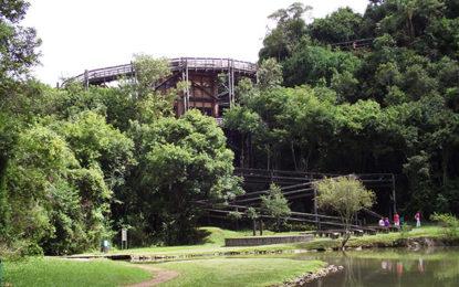 Curitiba, destino repleto de atrações