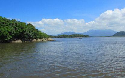 Parque do Cerrado e Baía de Guaratuba