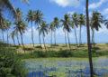 Costa do Sauípe terá junho especial