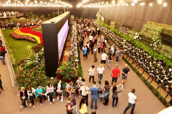 Coluna Volta ao Mundo por Nelci Seibel: Verdadeiro parque florido encanta os visitantes da Festa das Flores (divulgação)