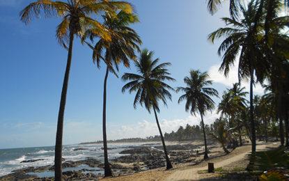 Costa do Sauípe, com observação de baleias