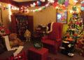 Hotel entra no espírito do Natal Luz
