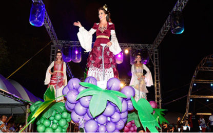 Festa da Uva e Aniversário de Joinville