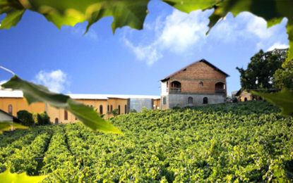 Casa Valduga, Chocofest, Ilha da Madeira e Costa Cruzeiros