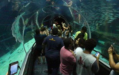 AquaRio, atração no roteiro carioca