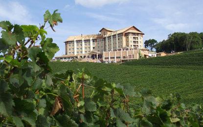 Festa do vinho retorna em junho