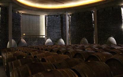 Dia do vinho, no Chile