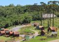 Olivoturismo em Gramado