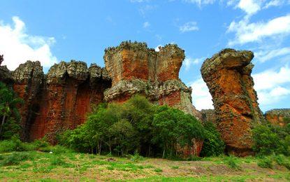 Paraná terá recursos para divulgação