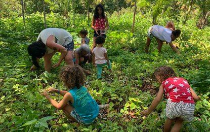 Férias da família com experiências ambientais